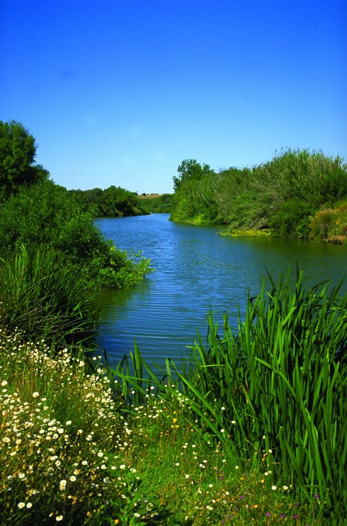 Ribeiras afluentes do Sado