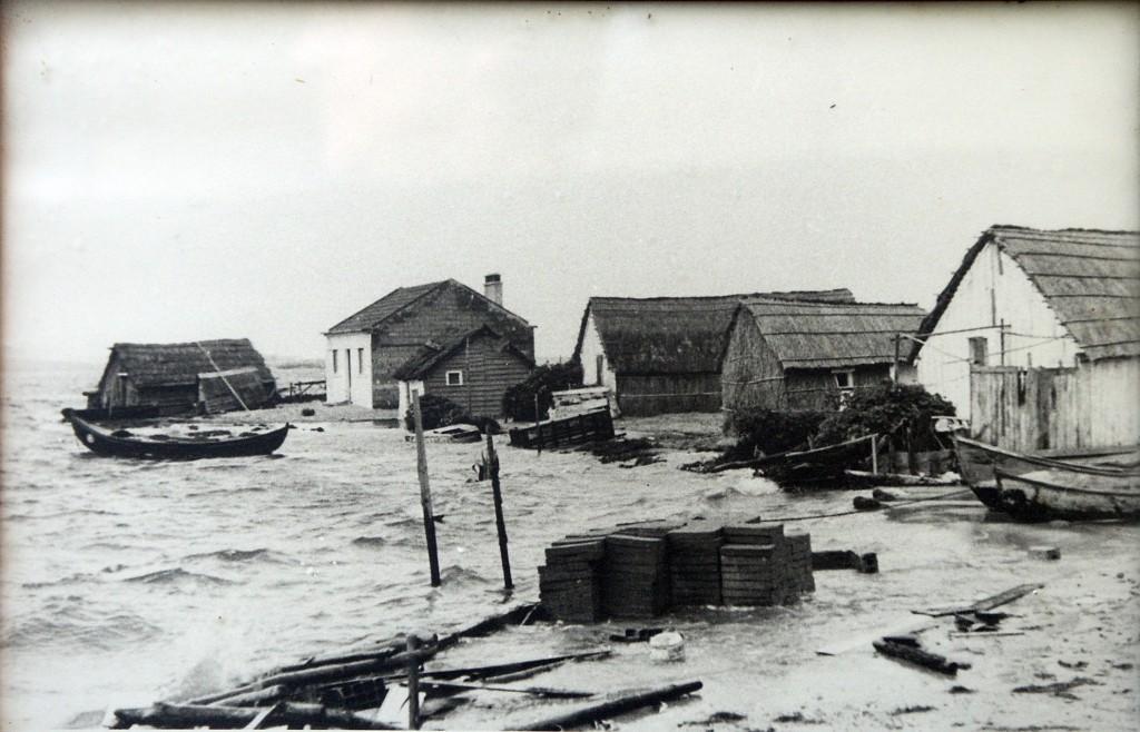 Cabanas e armazéns de colmo e caniço
